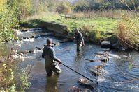 Karl Schwebel und Torsten Schäfer in der Modau bei der Flussinventur mithilfe von Elektrofischen. Bild: ZDF Fotograf: ZDF/Torsten Mehltretter