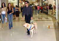 Blinder Mann mit seinem Blindenführhund