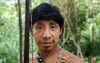 Die Awá haben Angst im Wald nach Nahrung zu suchen, weil sie Angriffe der Holzfäller fürchten. Bild: Survival