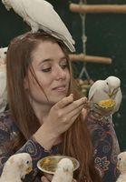 Cornelia Habl erforscht den Werkzeuggebrauch von Goffin-Kakadus. Bild: Copyright: privat (idw)