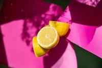 """Natürliche Vitamine und Mineralstoffe sind für unseren Körper essentiell. /  Bild: """"obs/artgerecht GmbH"""""""