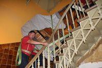 """""""Liebe Grüße gehen an die netten Herren vom Umzugsunternehmen. Zu zweit den großen Flügel die Treppe herunter tragen ist eine starke Leistung!"""". Bild: Königreich Deutschland"""
