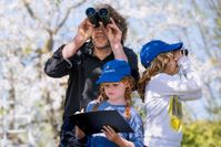 Vogelbeobachtung in der Familie. Bild:: NABU/ S. Hennigs