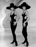 Alice und Ellen Kessler (1966), Archivbild