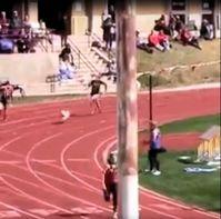 "Bild: Screenshot Video: ""Put this dog on the Olympic team !!"" (https://youtu.be/wEp9rHDFNNc) / Eigenes Werk"