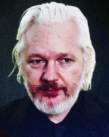 Julian Assange (2015), Archivbild