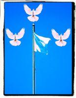Frieden, Waffenstillstand, Aufgeben (Symbolbild)