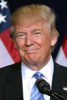 Donald Trump (2016)