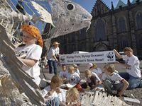 WWF-Aktion gegen die Überfischung der Meere. © WWF / Sabine Vielmo