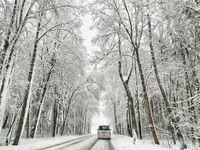 Schneefall, Winter, Glätte (Symbolbild)