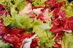 Bildquelle: aboutpixel.de / Salat1 © Ginkgo