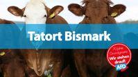 Die Parteipolitik auf dem Rücken der Landwirte dokumentiert das fragwürdige Demokratieverständnis der 'RinderAllianz'.