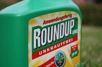 Round-up Glyphosat - hochgiftig für Mensch, Tier und Pflanze