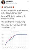 Erneuter Wahlbetrug bei der Senatswahl in Georgie.