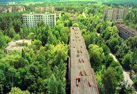 Ein Paradies auf Erden: Dank der nicht Einmischung von Behörden, Ämtern, Konerzen und anderer, blüht die Stadt Tschernobyl wieder auf, zumindest für die Natur.