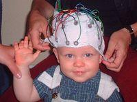 Elektroden auf der Kopfoberfläche registrieren die von den Nervenzellen ausgehenden elektrischen Signale und leiten sie an Messgeräte weiter. Quelle: MPI f. Kognitions- und Neurowissenschaften/ Ch. Rügen (idw)