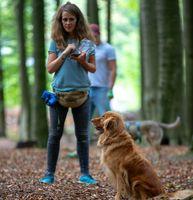 """Hundeschule Witten """"Unter Wölfen""""  Bild: """"obs/Unter Wölfen"""""""