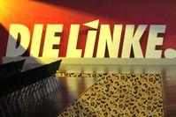 Die Linke Logo