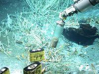 Das Tauchfahrzeug MARUM-QUEST sammelt Sedimentproben an Ölaustritten im Golf von Mexiko.