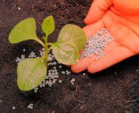 Kunstdünger: Schädlich für das Bodenleben (Symbolbild)