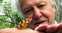 Sir David Attenborough  Bild: nhm.ac.uk