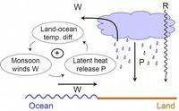 Skizze des Modellkonzepts und des Rückkopplungsmechanismus [W = Wind, P = Niederschlag, R = Sonneneinstrahlung] Bild: PIK