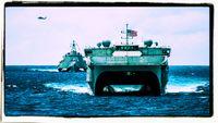 US Navy (Symbolild)