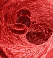 Blutplättchen im Gefäß: microRNA schützt Wand.