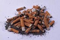 Zigarettenkippen sind ein Problemstoff. Bild: Ernst Rose/pixelio.de