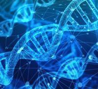 2 feststoffliche, 9 feinstoffliche  und ein Zwischenstrang prägen die menschliche DNA (Symbolbild)