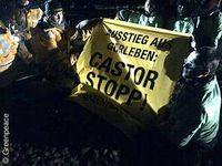 Greenpeace-Aktivisten haben sich hinter Lüneburg an dem Gleis festgemacht, auf dem der Castortransport komm. Bild: Greenpeace
