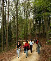 Die Schweizer Bevölkerung hält sich gerne und viel im Wald auf. Ursprüngliche und vielfältige Mischwälder, aber auch Quellen, Bäche und Teiche gefallen den Menschen. Quelle: Foto: Reinhard Lässig (idw)