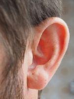 Ohr: Tinnitus kann lästig, sogar schmerzhaft sein.