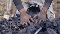 """Holzkohle-Herstellung in Nigeria: Das ist Handarbeit. Bild: """"obs/ZDF/Jonathan Happ"""""""