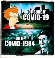Du bist dir nicht sicher ob es COVID-19 oder doch eher COVID-1984 ist? (Symbolbild)