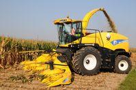 Maishäcksler bei der Ernte