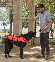 Hund mit Weste: Befehle per Vibration.