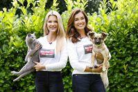 Mirja du Mont mit ihrer Katze Matilda und Jana Ina Zarrella mit ihrem Hund Cici Bild: Fressnapf Fotograf: Fressnapf Holding SE
