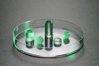 EPFL-Hydrogel in Petrischale: Forscher sehen großes Potenzial.