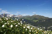 Bild: Arosa Tourismus