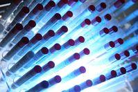 Symbolbild Polizei: Batterie von Teströhrchen