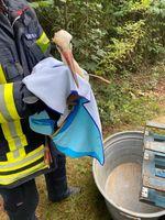 Der Storch konnte aus seiner misslichen Lage befreit werden. Bild: Feuerwehr