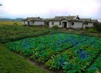 Bauernhäuser in Nordkorea