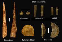 Archäologische Artefakte der Uluzzien Kultur aus der Grotta del Cavallo (Apulien, Süditalien). Quelle: Foto: Prof. Annamaria Ronchitelli und Dr. Katerina Douka. (idw)