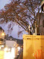 Messung an einer verkehrsbelasteten Straße als Indikator für die Luftqualität