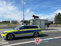 Holzpferd Bild: Polizei