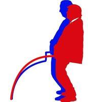 US-Wahl 2020 (Symbolbild)