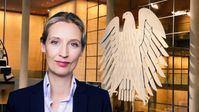 Dr. Alice Weidel (2020)