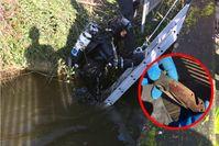 Taucheinsatz der Polizei / Abbildung der Tatwaffe Bild: Polizei