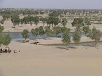 Das Tarim-Becken im Nordosten Chinas. Quelle: (Bild: TUM) (idw)